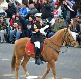 The Parade is about horses, bands and floats.