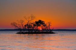A mangrove sunset over Oyster Bay. Tweeted by the US Department of the Interior, 12/30/13.