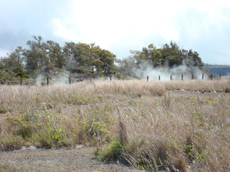 Volcanoes NP 06