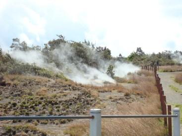 Volcanoes NP 08