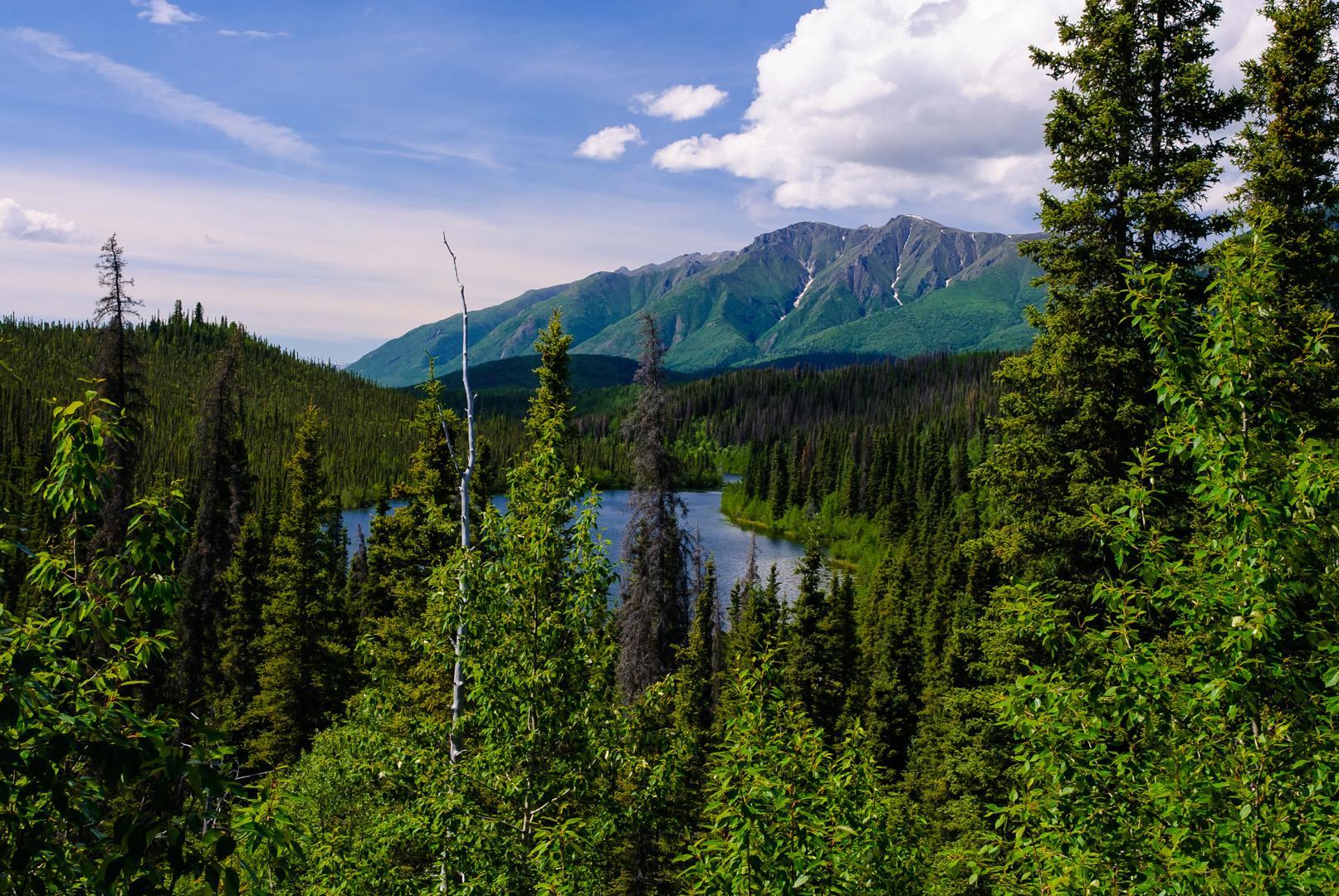 Willow Lake and Mount Wrangell, Wrangell Saint Elias National Park, Alaska без смс