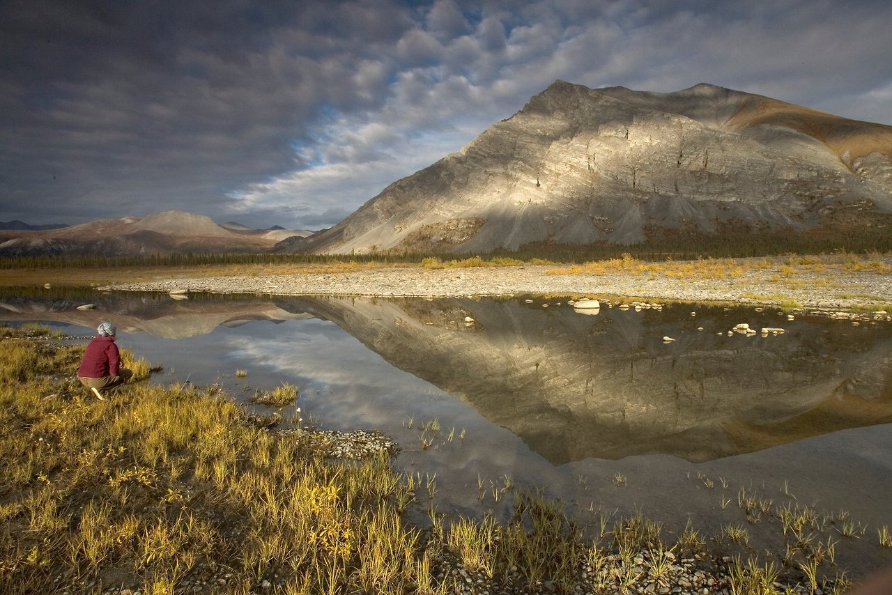 Arctic National Wildlife Refuge | MowryJournal.com