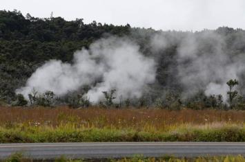 Steam vents. From the Park's website.