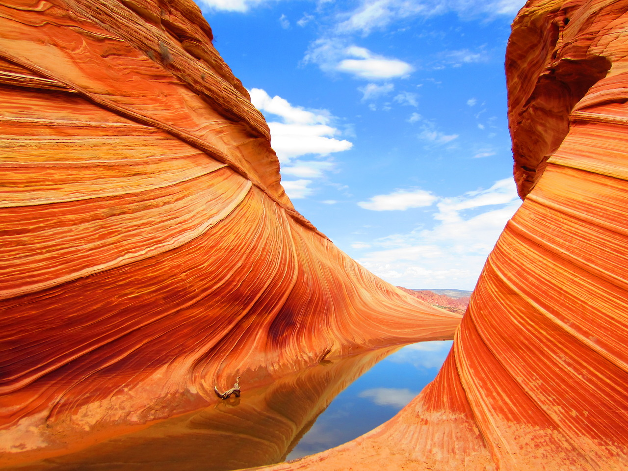 Colorado Plateau, Paria Canyon, Utah загрузить
