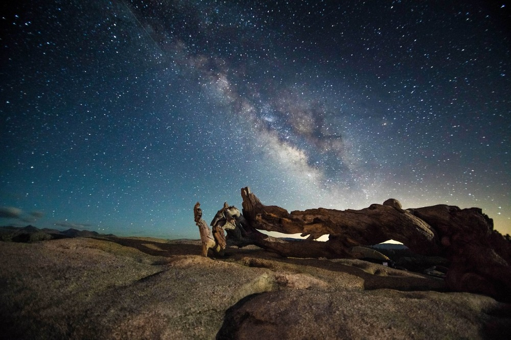 A shot of the Jeffrey Pine at the top of Sentinel Dome in Yosemite National Park (made famous by Ansel Adams) set against a backdrop of stars! This is a single exposure by Jesse Summers. Posted on Tumblr by the US Department of the Interior, 3/26/14.