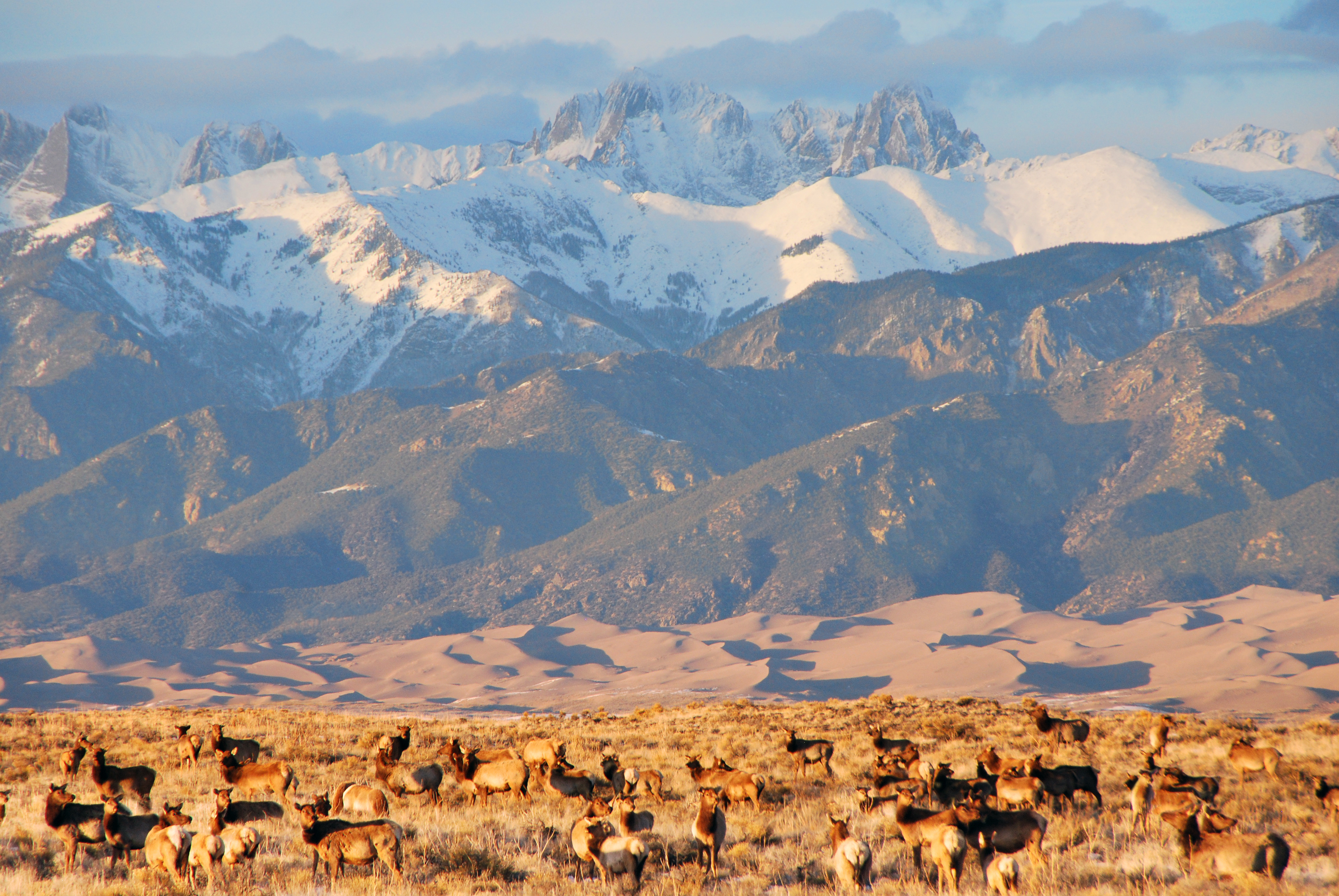 Great Sand Dunes National Park and Reserve | A Travel ... |Great Sand Dunes