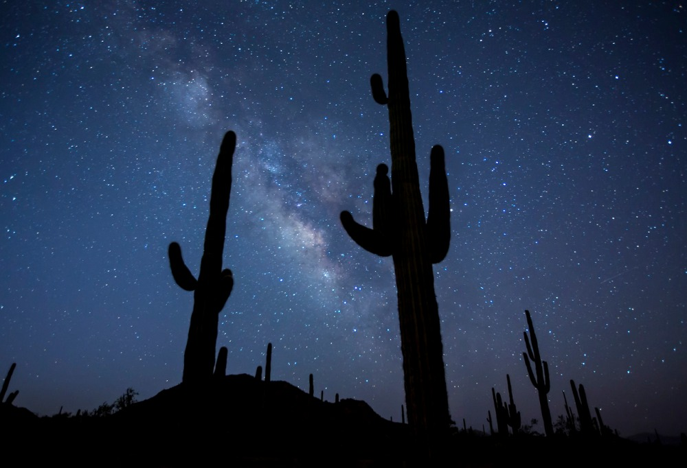 Milky Way near Butterfield Pass in the BLM-managed Sonoran Desert National Monument. This area is probably only 30-40 air miles from Phoenix, and the glow from the city is visible to the north. However, the overhead stars and southern horizon are dark enough to clearly see the Milky Way, which makes a great backdrop to the charismatic saguaros.  Photo: Bob Wick, BLM Wilderness Specialist