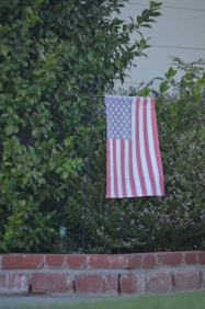 Again, not a fan of lawn art ... but if you're going to display the flag on a bracket in front of the shrubbery, then retire it when it becomes sun-faded.