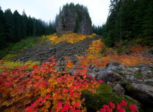 Table Rocks Wilderness in Oregon. Tweeted by the US Department of the Interior, 9/25/14.