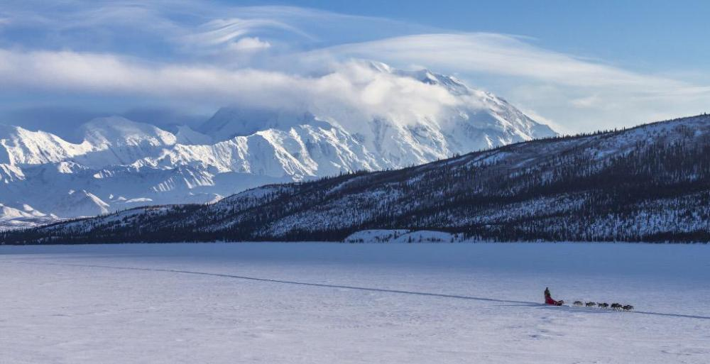Winter in Denali National Park. Tweeted by the US Department of the Interior, 3/7/15.