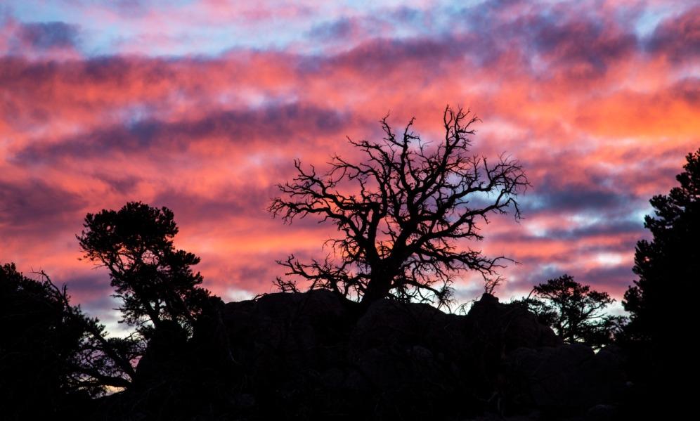 Granite Mountain Wilderness 06