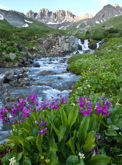With mountains shaped by volcanic fire and glacial ice, Handies Peak Wilderness Study Area in Colorado offers an otherworldly landscape. Multi-colored rock strata, diverse vegetation and quick flowing streams evoke a fairytale beauty begging to be explored. Photo by Bob Wick. Posted on Tumblr by the US Department of the Interior, 8/30/15.