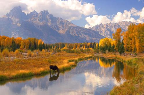 Grand Teton National Park in the fall. Tweeted by the US Department of the Interior, 9/30/15.