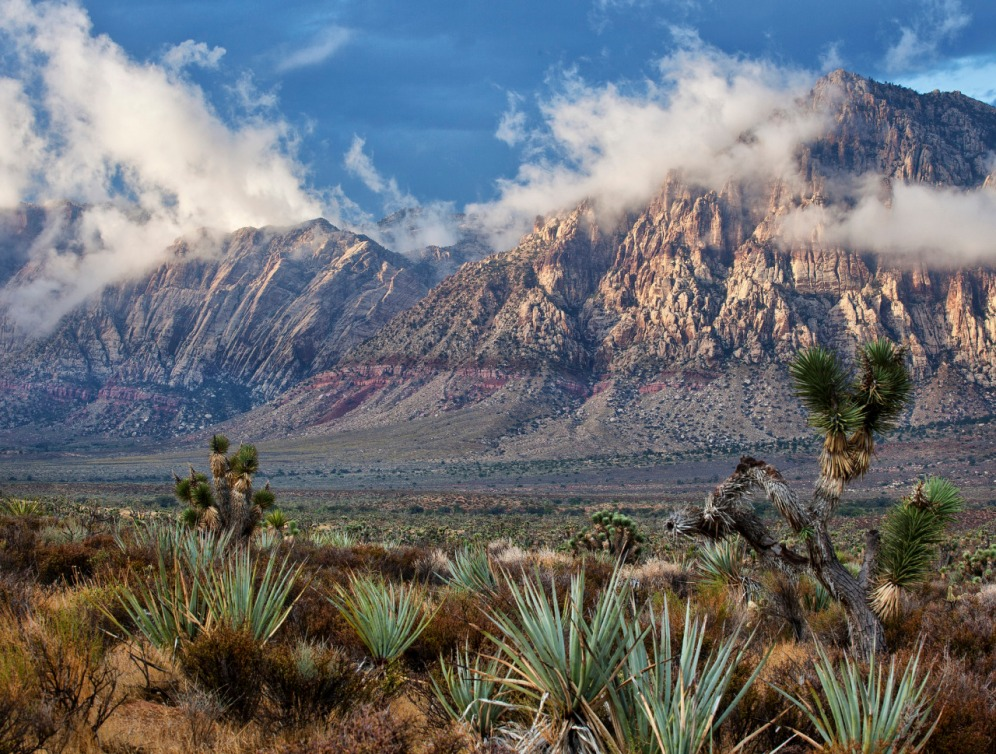 Just 12 miles west of Las Vegas, the colorful, bare sandstone of the aptly named Rainbow Mountain Wilderness emerges from the valley floor – standing guard over the surrounding pinyon-juniper forest and Mojave Desert scrub below. Its sheer, towering red and white cliffs are cut by rugged, narrow, twisting canyons lined with willow, ash and hackberry trees. With wispy clouds pouring over the mountains, it is quite a view. Photo by Bob Wick. Posted on Tumblr by the US Department of the Interior, 10/20/15.