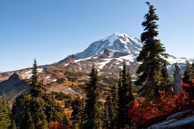 Mt Rainier National Park. Photo by Kathy Chrestensen. Tweeted by the US Department of the Interior, 11/30/15.