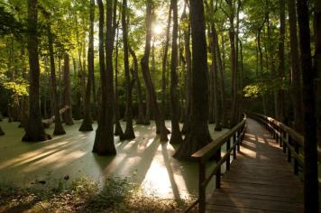 One of the most scenic parkways in America, Natchez Trace Parkway runs 444 miles through Mississippi, Alabama and Tennessee. Passing stunning landscapes and pausing at hidden cultural treasures, traveling the Trace is a pleasure by foot, bike and car. Tweeted by the US Department of the Interior, 10/30/15.