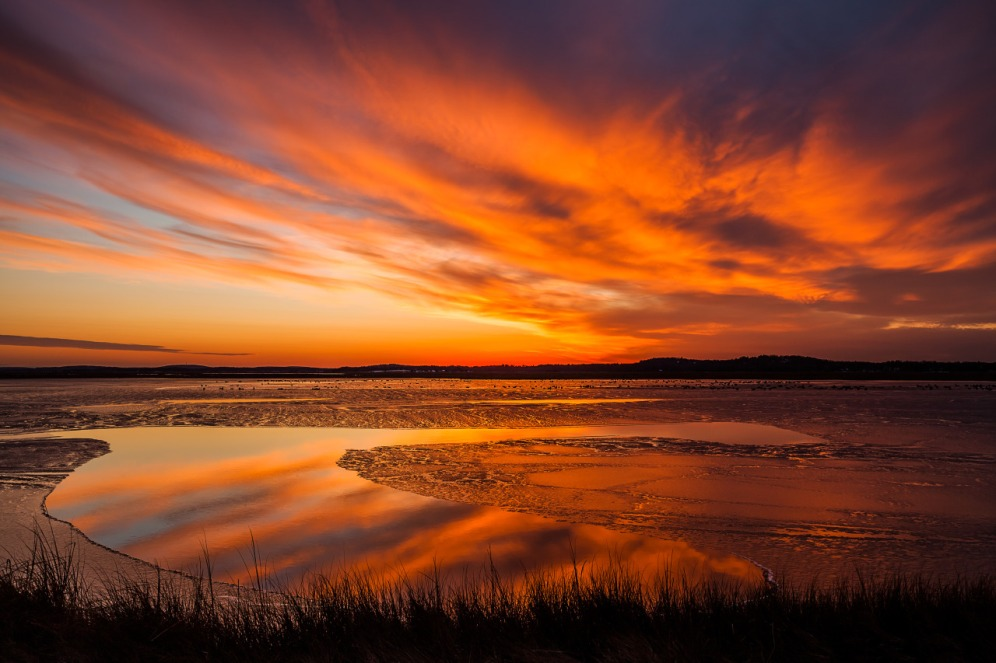 Sunset sparkles off ice and water at Parker River National Wildlife Refuge. Not far from Boston, Massachusetts, Parker River National Wildlife Refuge covers 4700 acres of salt marsh, shrub land and sandy beach. There are over 300 species of resident and migratory birds to watch, as well as a large variety of mammals, reptiles and amphibians. Photo by Sylvia Zarco. Posted on Tumblr by the US Department of the Interior, 1/4/16.