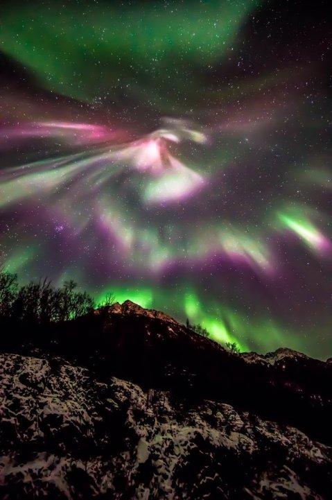 Mesmerizing pic of the Northern Lights over Denali National Park. Photo by Jeremy Martin. Tweeted by the US Department of the Interior, 9/25/16.