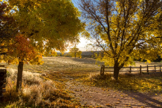 Foliage at John Jarvie Ranch in Utah. Photo by Bob Wick, BLM. Tweeted by the US Department of the Interior, 10/21/16.