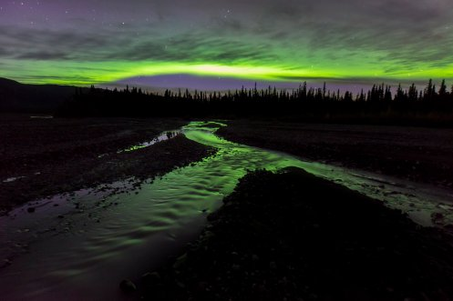 The Northern Lights reflected in a river at the Denali National Park. Photo by Carl Johnson. Tweeted by the US Department of the Interior, 2/17/17.