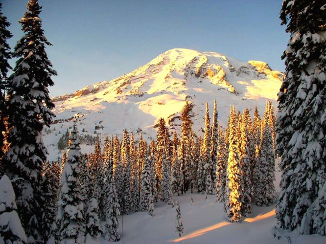 Mt Rainier National Park, bathed in golden sunlight. Tweeted by the US Department of the Interior, 3/24/17.