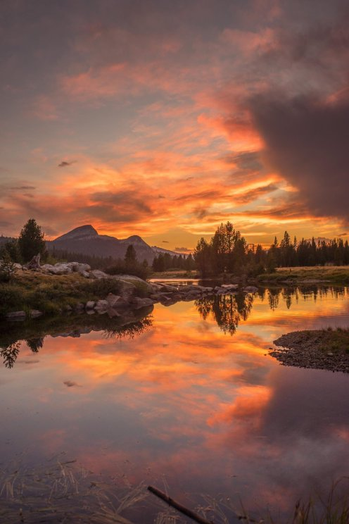 The view from Yosemite National Park's Tuolumne Meadows. Tweeted by the US Department of the Interior, 3/26/17.